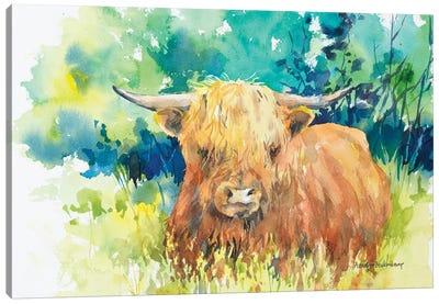 Steer I Canvas Art Print