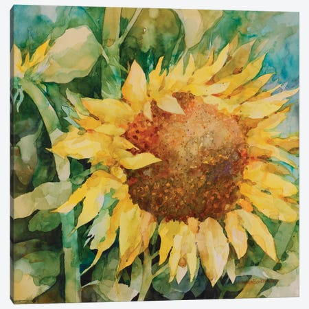 Sunflower Canvas Print #BKK166} by Annelein Beukenkamp Canvas Artwork