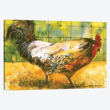 Chicken Fence Canvas Print #BKK30} by Annelein Beukenkamp Canvas Artwork