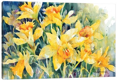 Daffodil Party Canvas Art Print