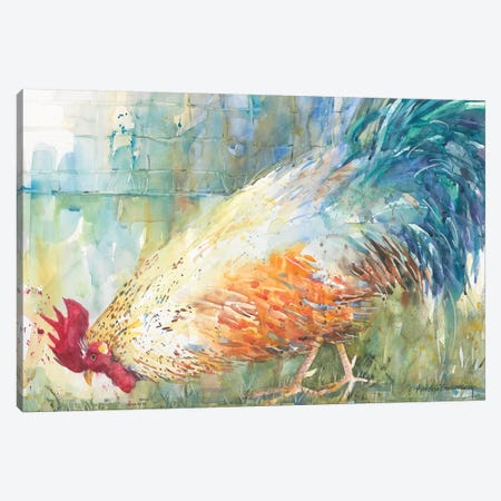 Feathered Forager Canvas Print #BKK47} by Annelein Beukenkamp Canvas Art