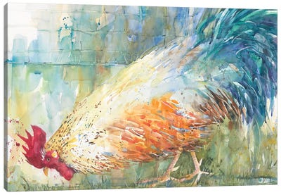 Feathered Forager Canvas Art Print