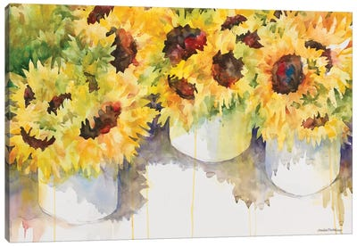 Follow The Sun Canvas Art Print