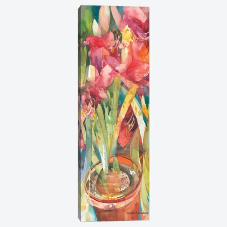 Architectural Amaryllis Canvas Print #BKK5} by Annelein Beukenkamp Canvas Print