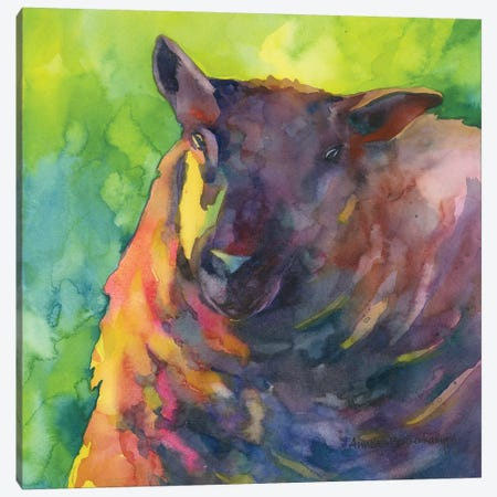 Baa Baa Black Sheep Canvas Print #BKK8} by Annelein Beukenkamp Canvas Artwork