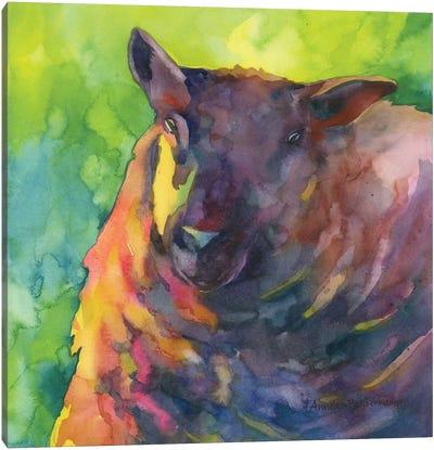 Baa Baa Black Sheep Canvas Art Print