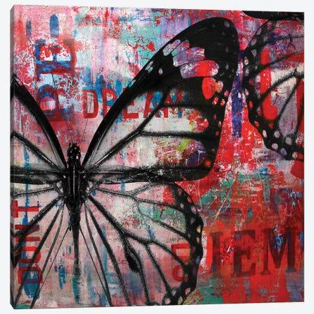 Butterfly IV Canvas Print #BKR10} by Micha Baker Art Print