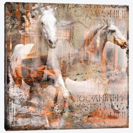 Horse Canvas Print #BKR61} by Micha Baker Canvas Wall Art