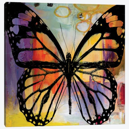 Butterfly III Canvas Print #BKR9} by Micha Baker Canvas Wall Art