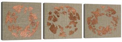 Transmutation Triptych Canvas Art Print