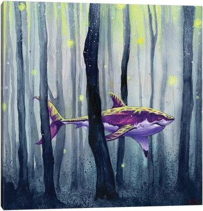 Through The Night Canvas Art Print