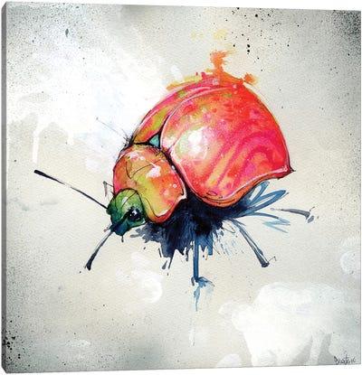 Beetle Juice I Canvas Art Print
