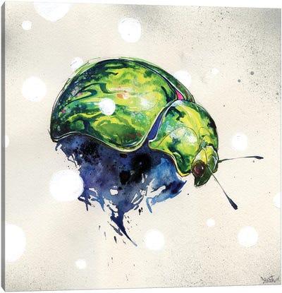 Beetle Juice II Canvas Art Print