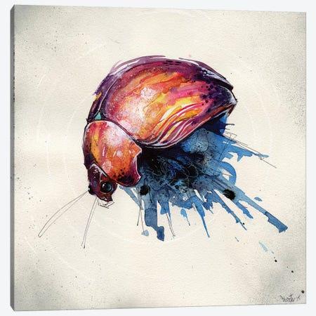 Beetle Juice III Canvas Print #BKT34} by Black Ink Art Canvas Artwork