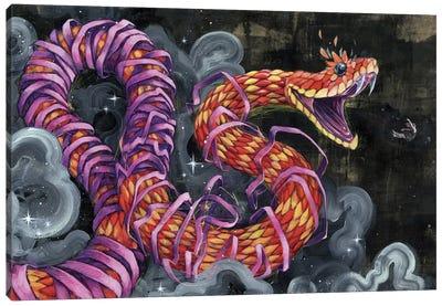 Black Flies Change Colors Canvas Print #BKT35