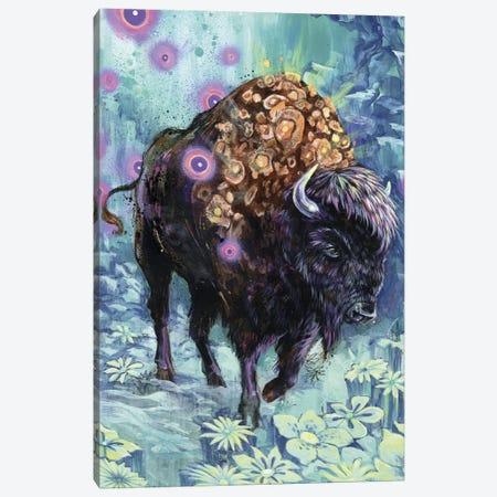 Buffalo Bloom Canvas Print #BKT36} by Black Ink Art Canvas Artwork