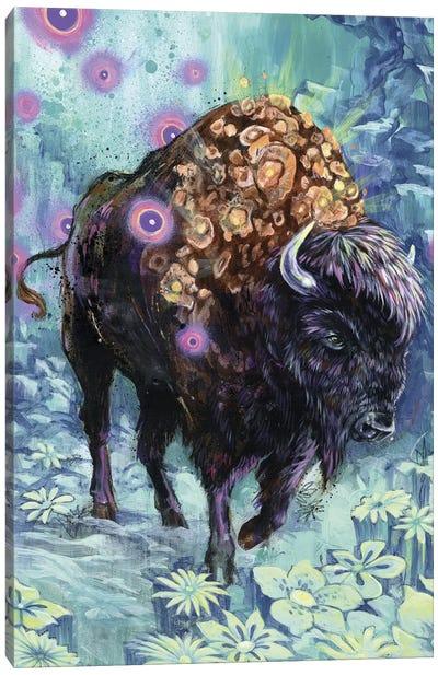 Buffalo Bloom Canvas Print #BKT36