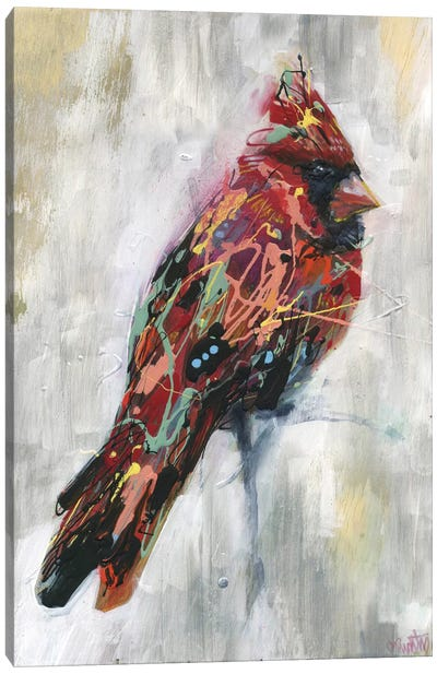 Ezra's Feathers Canvas Art Print