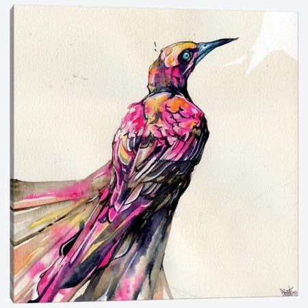 Grackle I Canvas Print #BKT53} by Black Ink Art Canvas Print