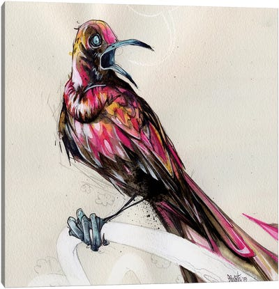 Grackle III Canvas Art Print