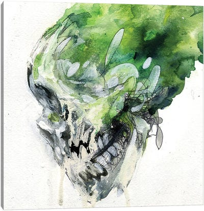 Green Skull Canvas Art Print