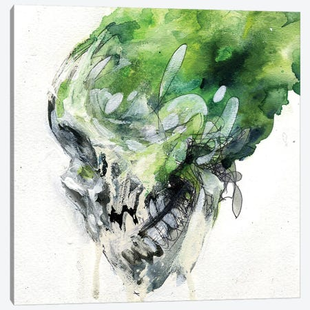 Green Skull Canvas Print #BKT56} by Black Ink Art Canvas Wall Art