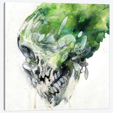 Green Skull Canvas Print #BKT56} by Black Ink Art Canvas Wall Art