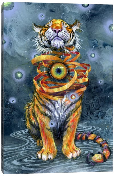 Eyes Wide Shut Canvas Art Print