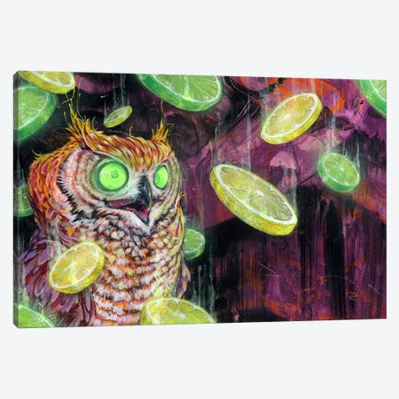 Lemon Lime Rickey Canvas Print #BKT99} by Black Ink Art Art Print
