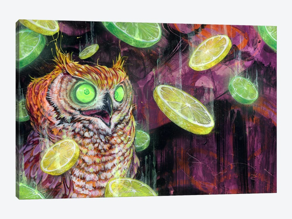Lemon Lime Rickey by Black Ink Art 1-piece Art Print