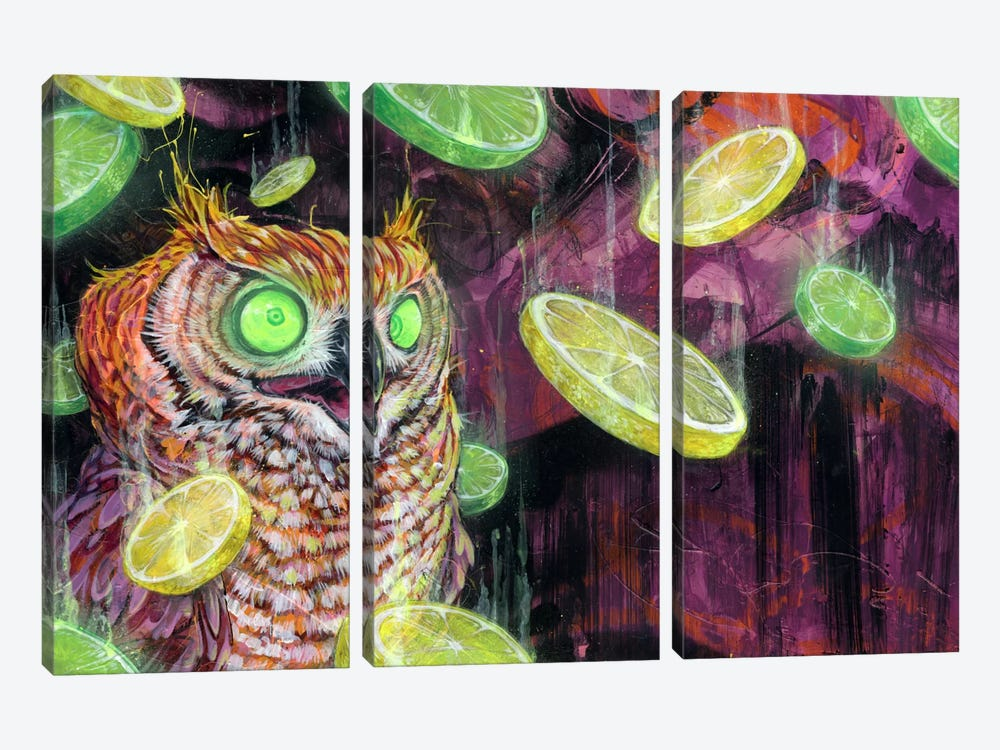Lemon Lime Rickey by Black Ink Art 3-piece Art Print