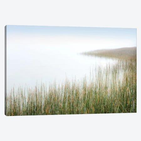 Crescent Beach Calm III Canvas Print #BLA16} by Alan Blaustein Canvas Art