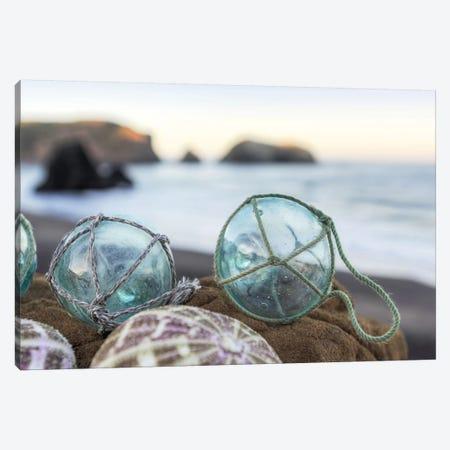 Crescent Beach Shells XVI Canvas Print #BLA33} by Alan Blaustein Canvas Art Print