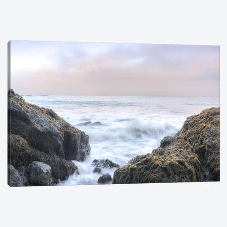 Crescent Beach Waves III Canvas Print #BLA36} by Alan Blaustein Canvas Wall Art