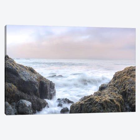 Crescent Beach Waves III Canvas Print #BLA36} by Alan Blaustein Canvas Wall Art