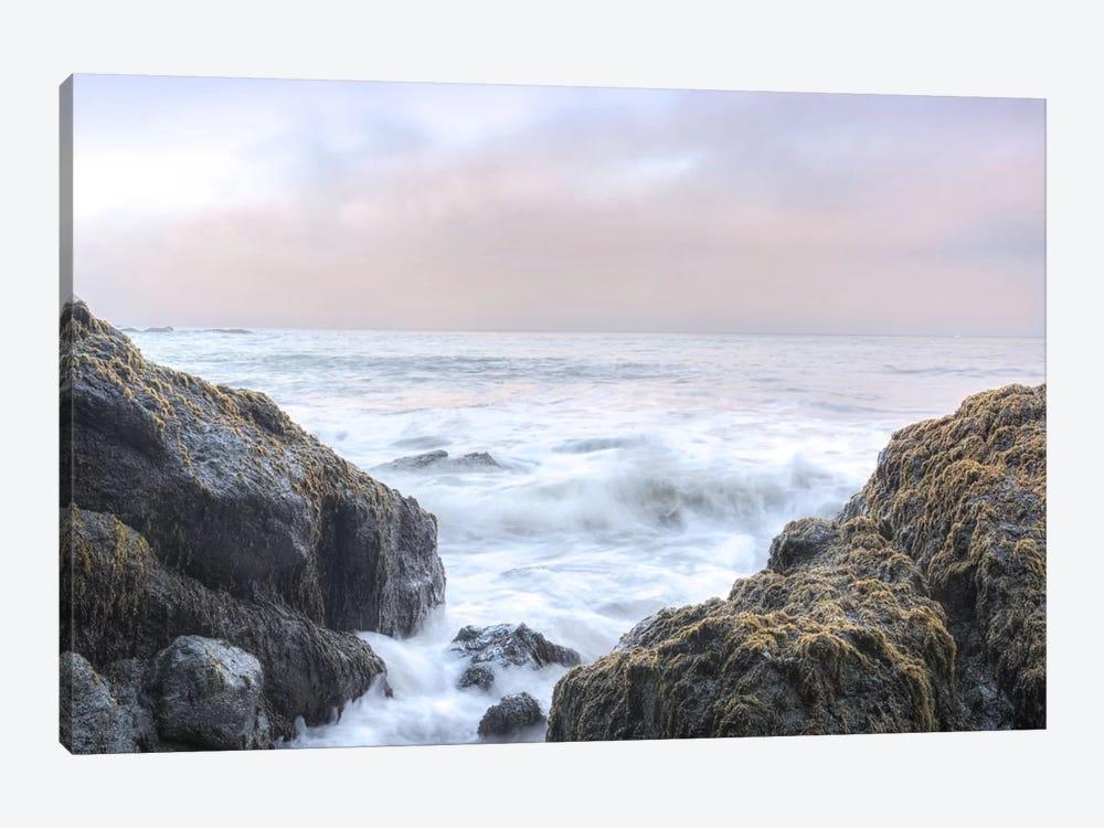 Crescent Beach Waves III by Alan Blaustein 1-piece Canvas Print
