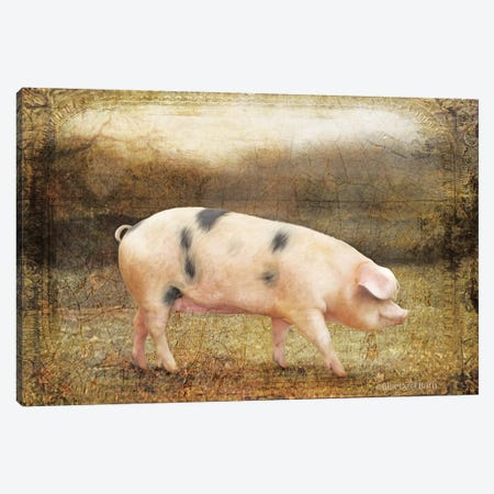 Vintage Sow Canvas Print #BLB103} by Bluebird Barn Art Print