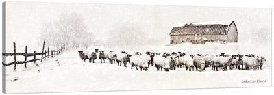 Warm Winter Barn with Sheep Herd Canvas Art Print