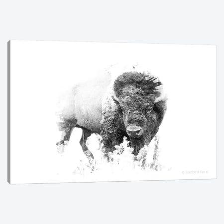 Bold Minimalist Bison Canvas Print #BLB12} by Bluebird Barn Canvas Artwork