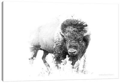 Bold Minimalist Bison Canvas Art Print