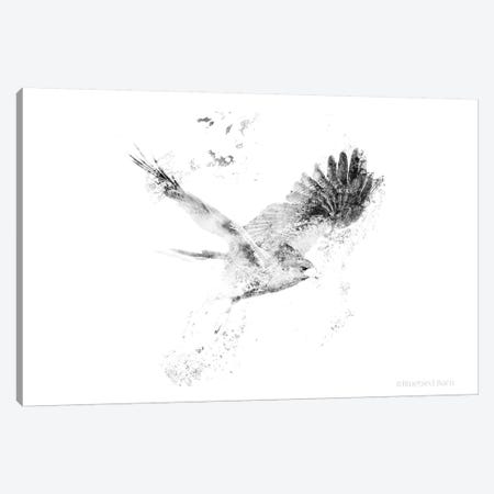 Wingspread Minimalist Hawk Canvas Print #BLB135} by Bluebird Barn Canvas Print