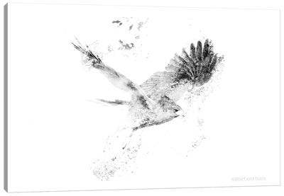 Wingspread Minimalist Hawk Canvas Art Print