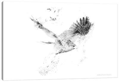 Wingspread Minimalist Hawk Canvas Art Print