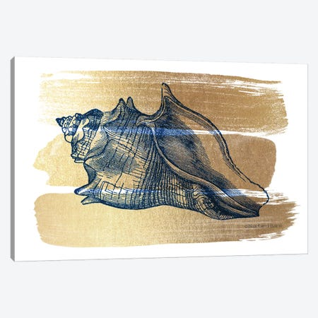 Brushed Gold Seashell 3-Piece Canvas #BLB148} by Bluebird Barn Canvas Art Print