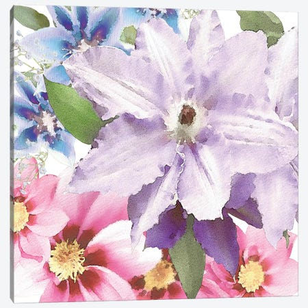 Clematis II Canvas Print #BLB16} by Bluebird Barn Canvas Print