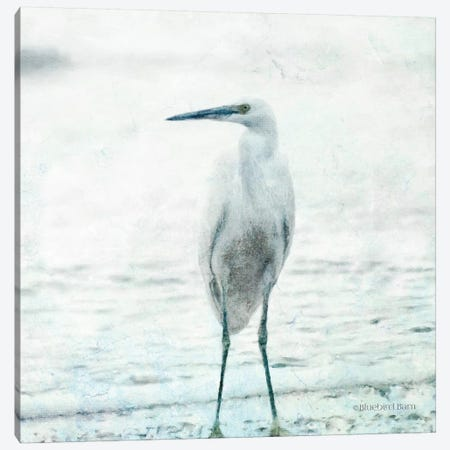 Beach Heron Canvas Print #BLB172} by Bluebird Barn Canvas Art