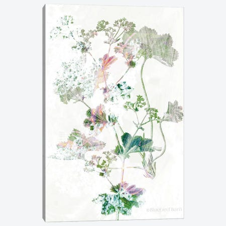Boho Geranium Botanical    Canvas Print #BLB173} by Bluebird Barn Canvas Wall Art