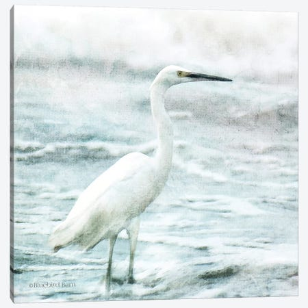 Coastal Heron Canvas Print #BLB177} by Bluebird Barn Art Print