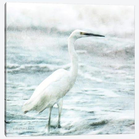 Coastal Heron Canvas Print #BLB177} by Bluebird Barn Art Print