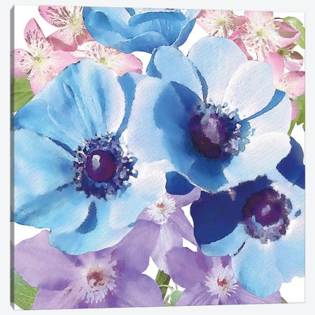Clematis III Canvas Print #BLB17} by Bluebird Barn Art Print